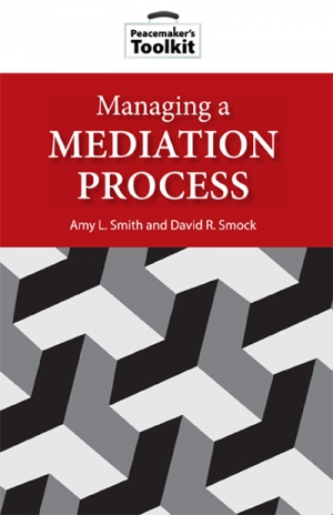 Managing a Mediation Process Book Cover