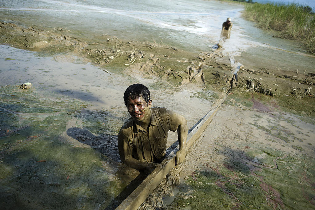 Myanmar 2015. Kalay. Aye Thar Yar village. Many areas are still badly affected on flooding, three weeks after the monsoon floods hit Myanmar´s northwest, western and south-western regions. Men in Kalay township area are rescuing boards from the flood water - the remaining pieces of their houses.