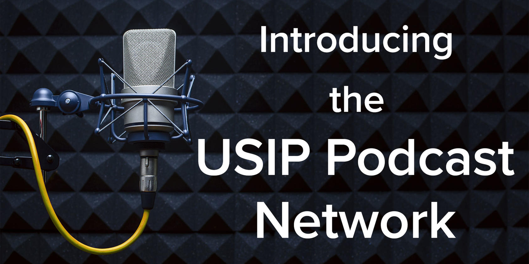 USIP Podcast Network