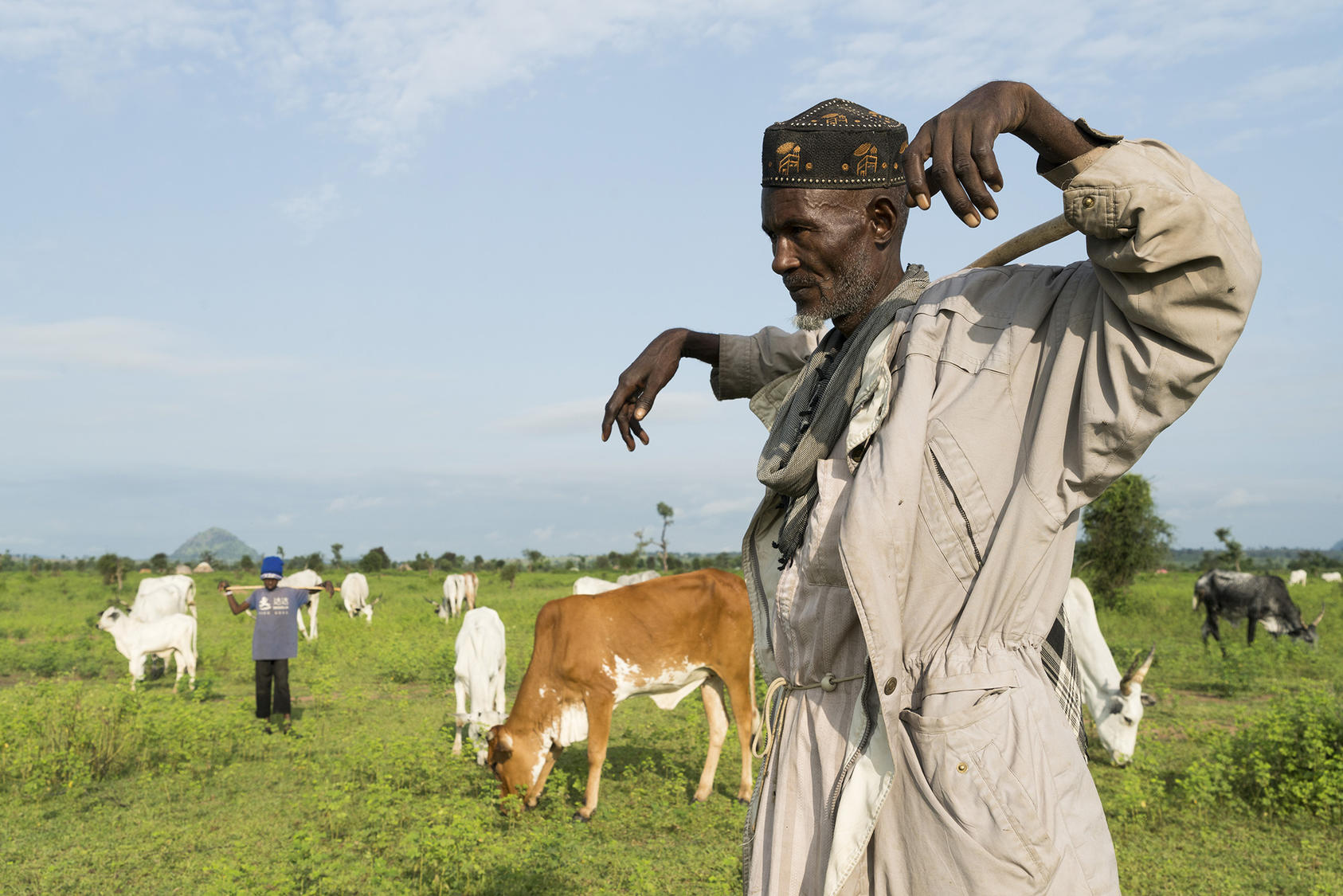 A herder watches his cows graze outside of the village of Koboga, Nigeria, Sept. 4, 2018. Photo courtesy of Adriane Ohanesian/The New York Times.