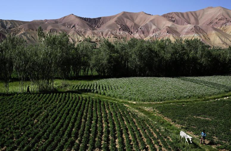 G-8 Summit Focuses on Food Security