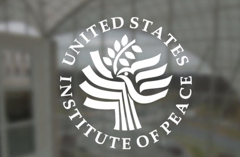 USIP: In Review and Looking Forward (Video)