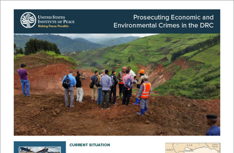 Prosecuting Economic and  Environmental Crimes