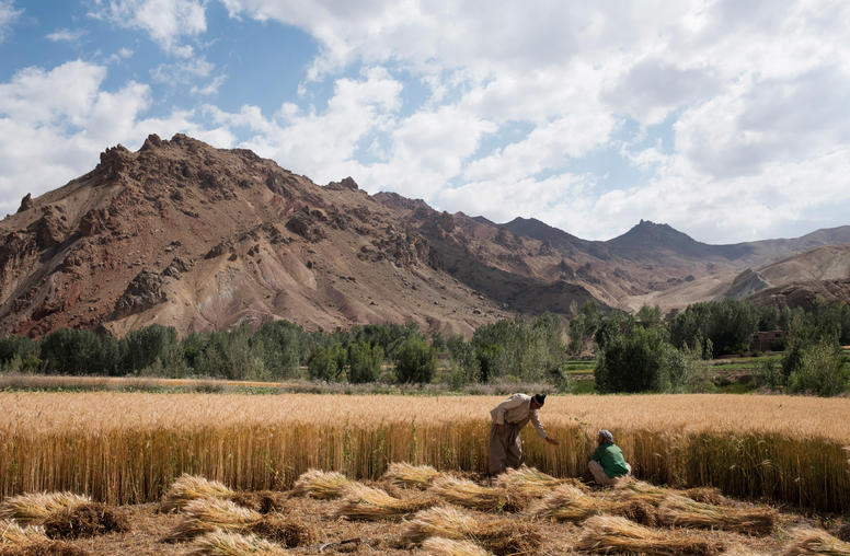 Troops, Reforms, Regional Role Define Afghanistan Plan