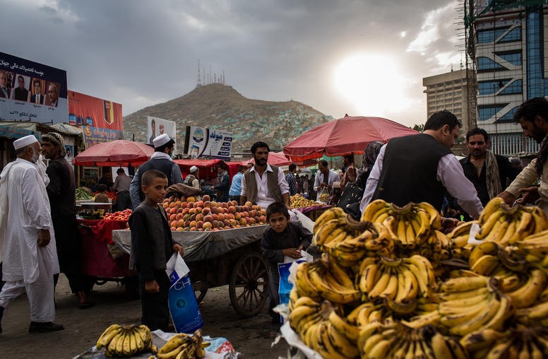 Local Governance Reform in  Afghanistan and the 2018 Elections