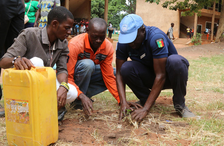 Creating a Stable Peace in the Central African Republic