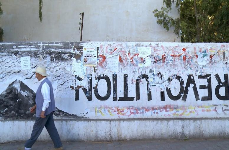 Tunisia: Will Elected Local Governments Build Democracy? (Video)