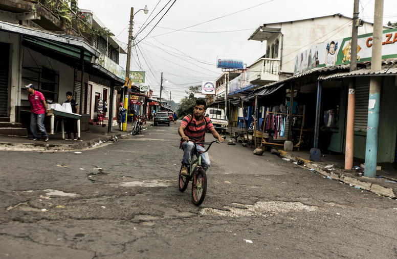 What Drives Violence in Central America's Northern Triangle?