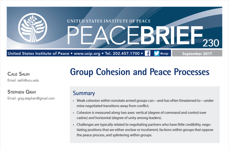 Group Cohesion and Peace Processes